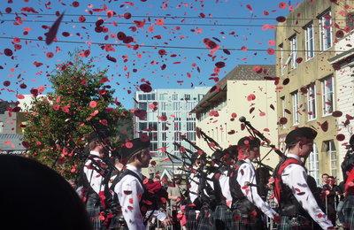 ANZAC poppy confetti