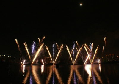 Pyromusical fireworks display by Firework Professionals
