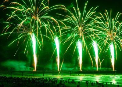 Treetech fireworks